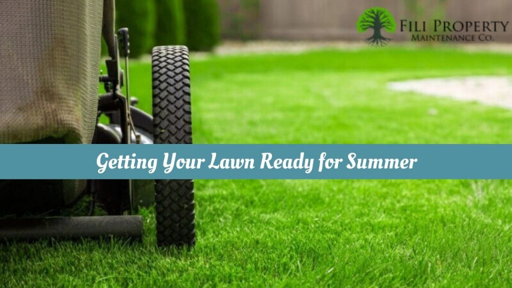 Getting Your Lawn Ready for Summer